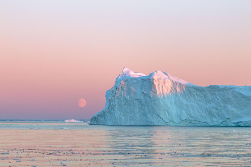 Moon by Jenni Lisacek
