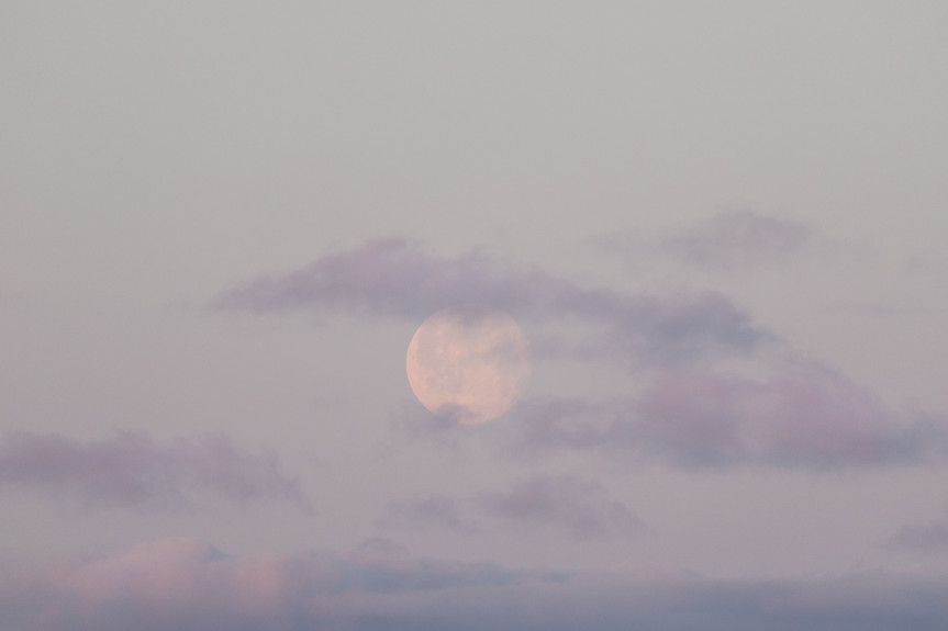 Moon Rising by Jenni Lisacek