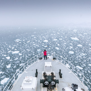Svalbard Polar Bear Tour in August 2020