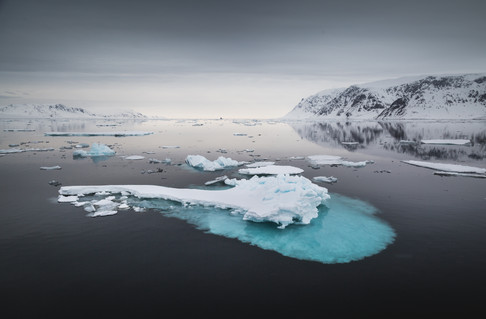 Chase Teron Arctic Professional Photographer and Guide Svalbard