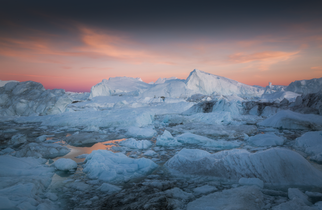 Greenland Photo Tour Arctic Chase Teron
