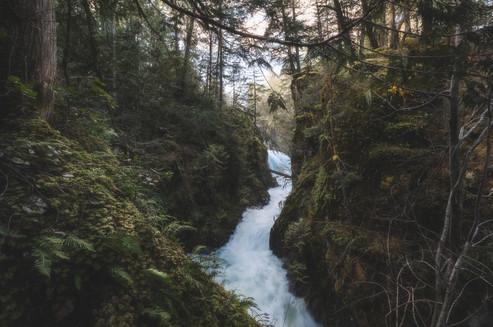 Chase Teron Photographer Vancouver Island