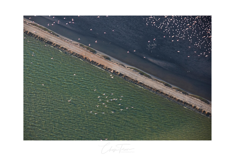 Aerial photography tour Swakopmund, Namibia by Chase Teron Bush Bird