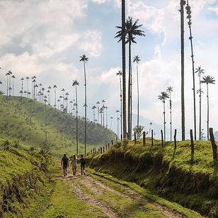 AA Colombia -11.jpg