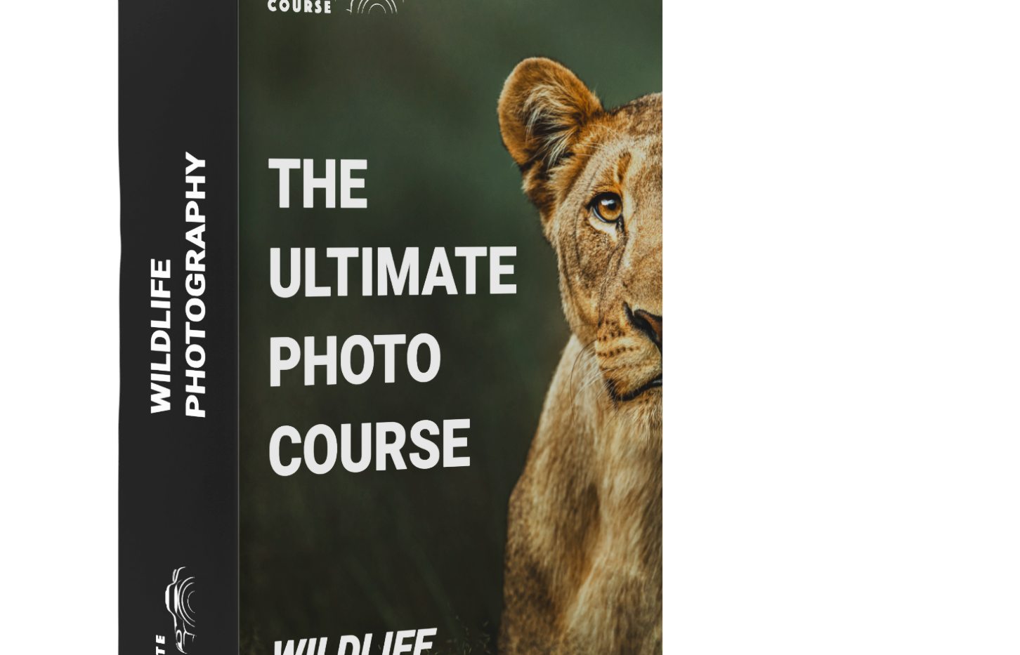 Wildlife Photography Tutorial Ultimate P