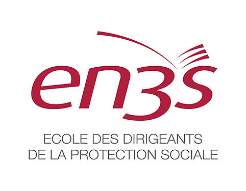 logo EN3S.jpg