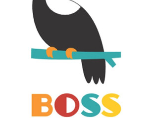 Révéler ses talents de manager avec BOSS A NOVA