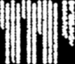 一般社団法人瀬戸内伝統航海協会,ラストチャンス