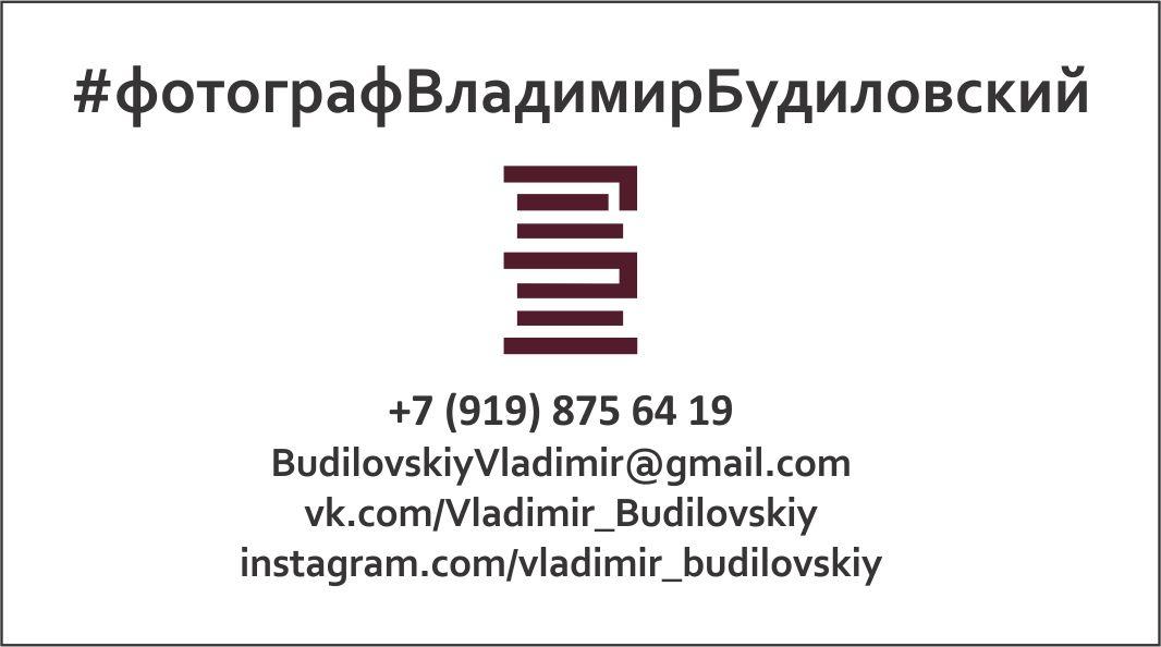 ВизиткаБудиловский