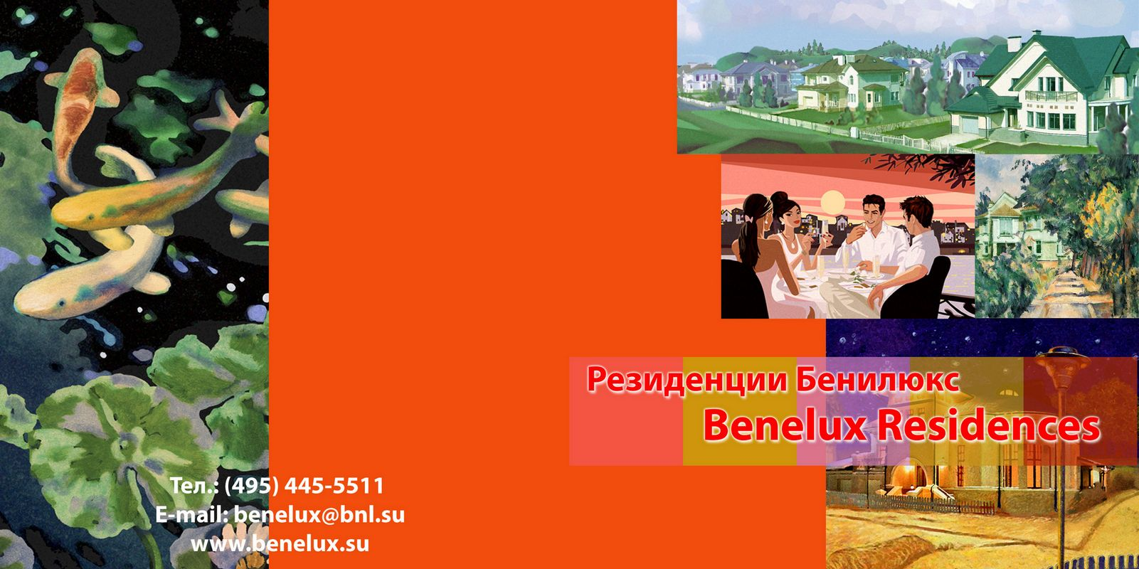 120-120-benelux-800