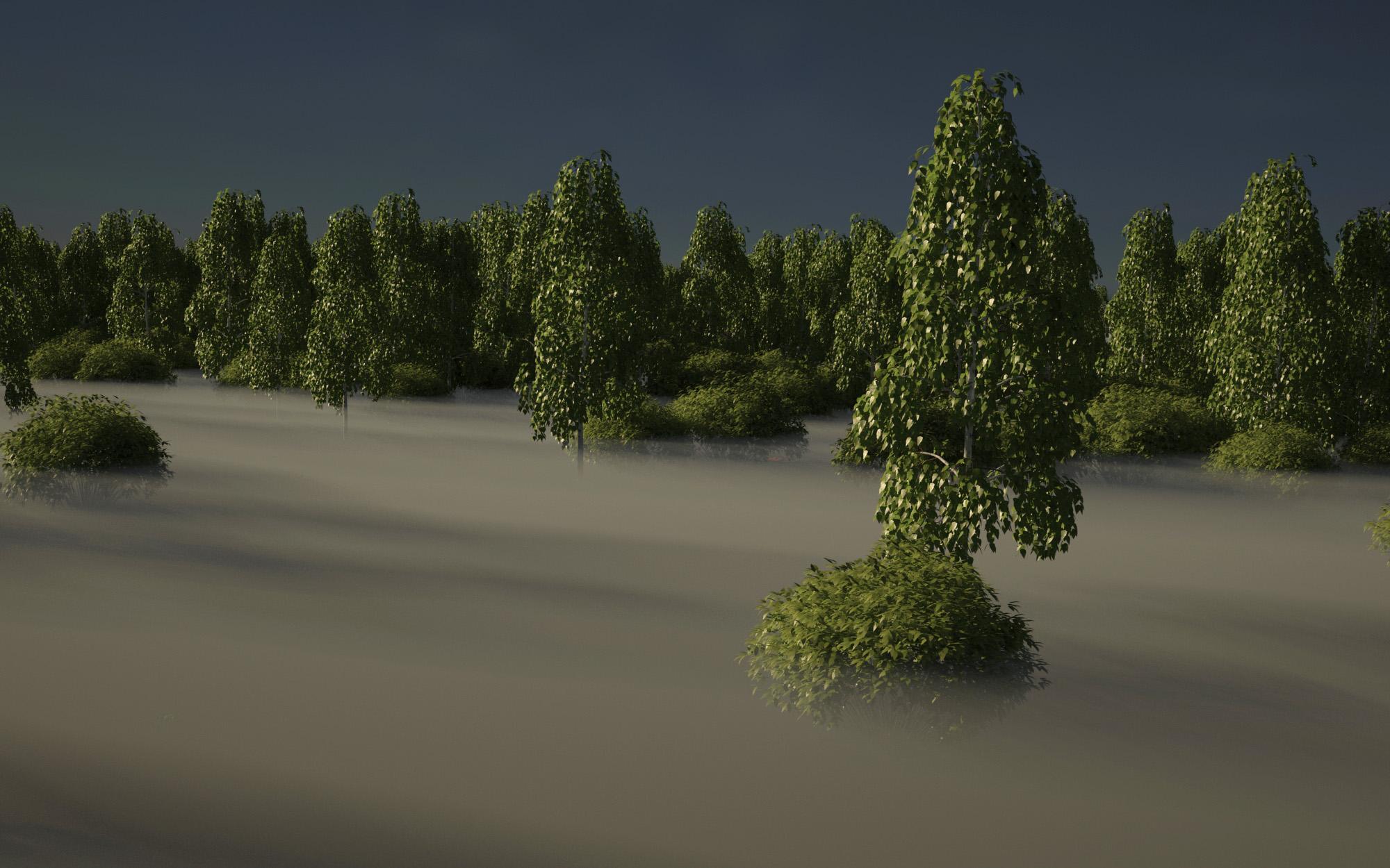 forest-test_VRayCam001_05-18-2017