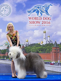 Hottey_Moskovassa.jpg