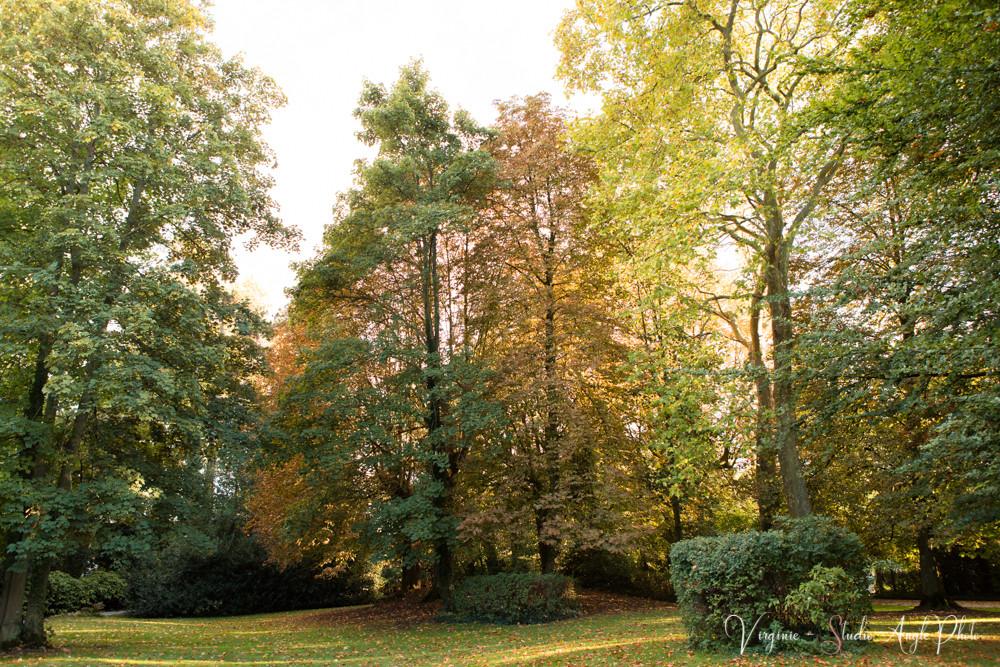 parc de la ferme de Mauperthuis a Charny