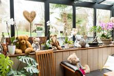 Une soirée anniversaire surprise au Refuge des 3 ours à Essuiles dans l'Oise