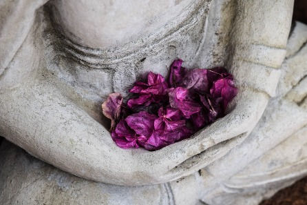 Integrated Yoga Healing