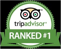 tripadvisor-badge-ranked-1.png