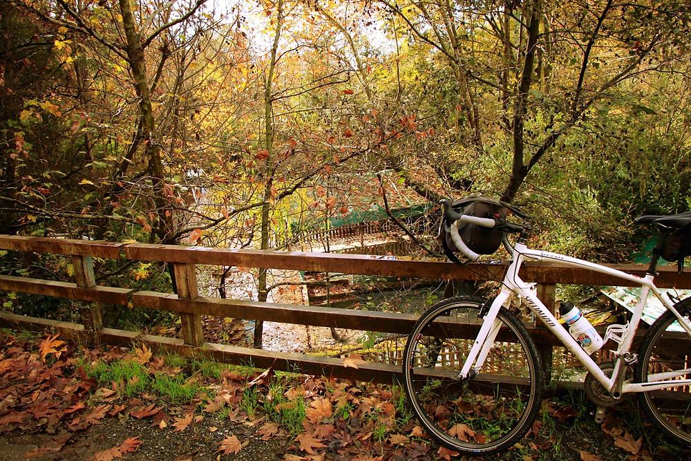 Köyceğiz Bisiklet Festivali, Fotoğraf Göktürk Günal