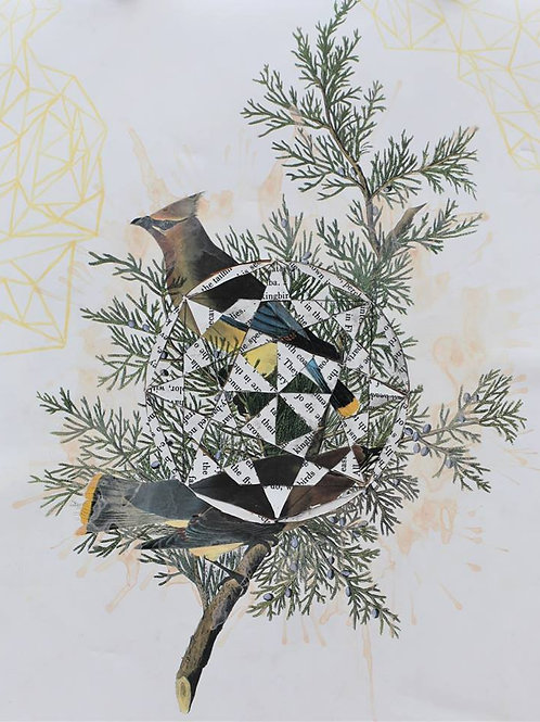 """""""Ode to Audubon"""""""
