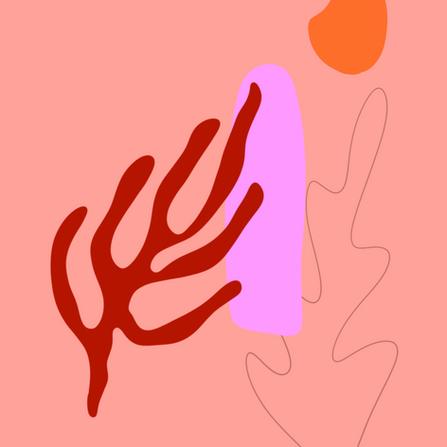 After Matisse