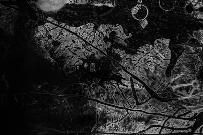 Lunar (detail)