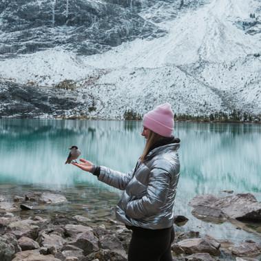 Backpacker With Bird In Alberta