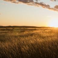 Setting Sun In Grasslands National Park