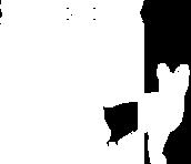 Logo SB_logo blanc.png