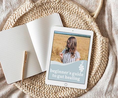 Beginner's Guide To Gut Healing eBook