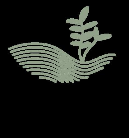 Salt+Spoon Final Logo-01.png