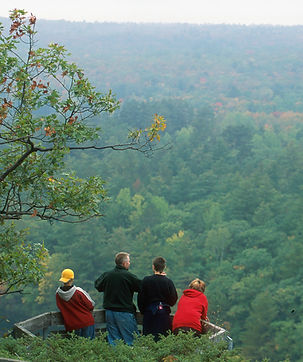 Family In Treetop Lookout