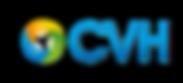 CVH formation bilan de competences