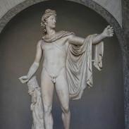 Vatican Museum - Apollo Belvedere..jpg