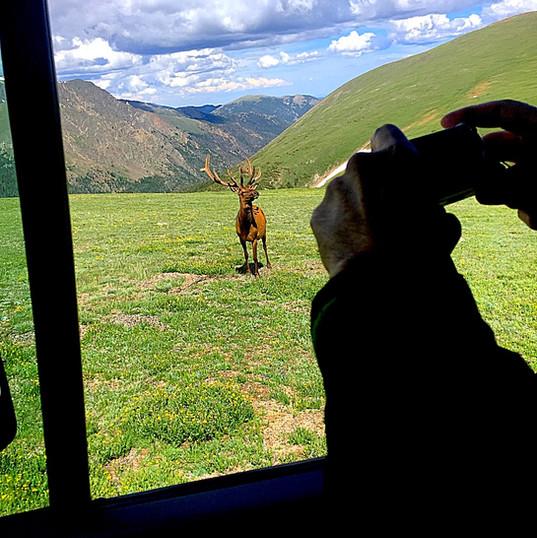Rocky Mountain National Park Tour (27)_e