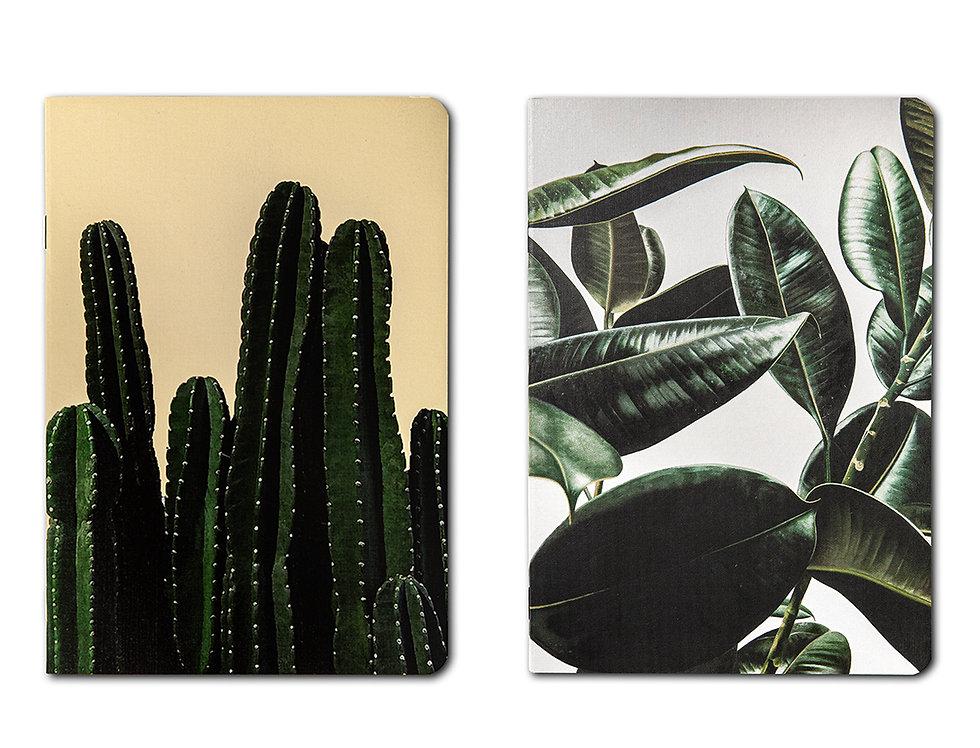2li Set Cactus - Leaf A5 Defter