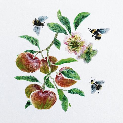 Three Bees ~ Giclée print