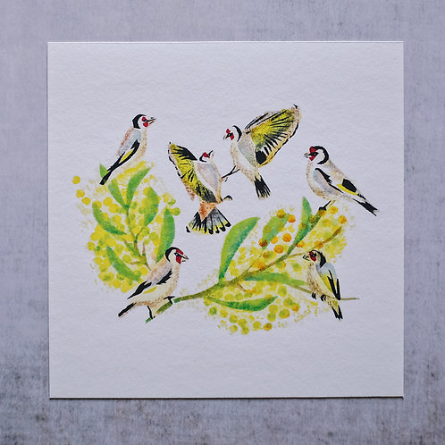 Six Goldfinches ~ Giclée print