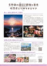 P16_page-0001.jpg
