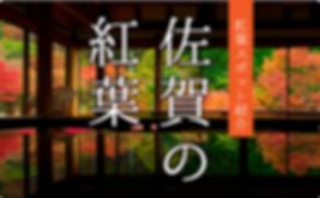 00000095_name[1].png
