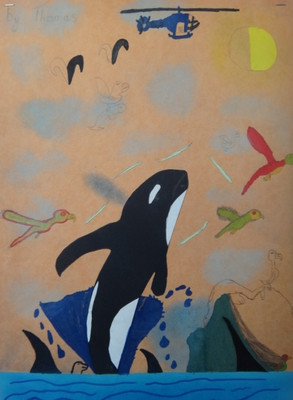 Living in The Falkland Islands by Thomas Mcleod, Yr 6