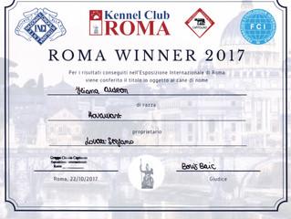IDS Roma Winner - MS Hovawart