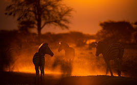 Botswana  - 'The Land of Light and Dust'