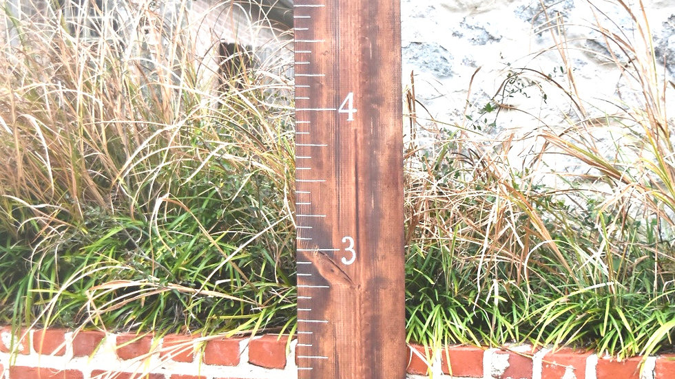 Custom Stained Growth Chart