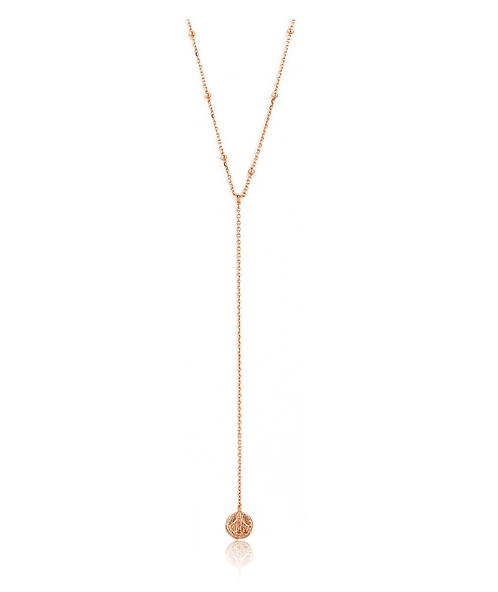 ANIA HAIE ROSE GOLD DUES Y NECKLACE