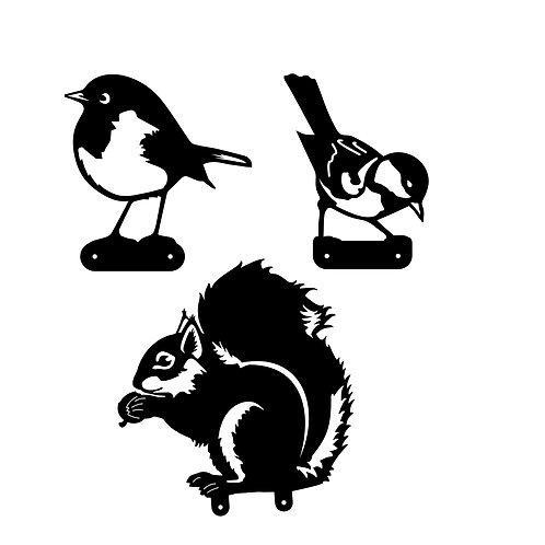 Custom Order, Rusty Squirrel, Great Tit, Robin