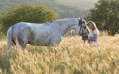 mediation avec le cheval Salon Bien etre