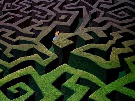 O Rio em seu labirinto