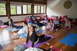 C Yoga (16)