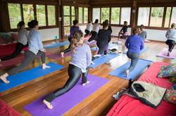 C Yoga (54)