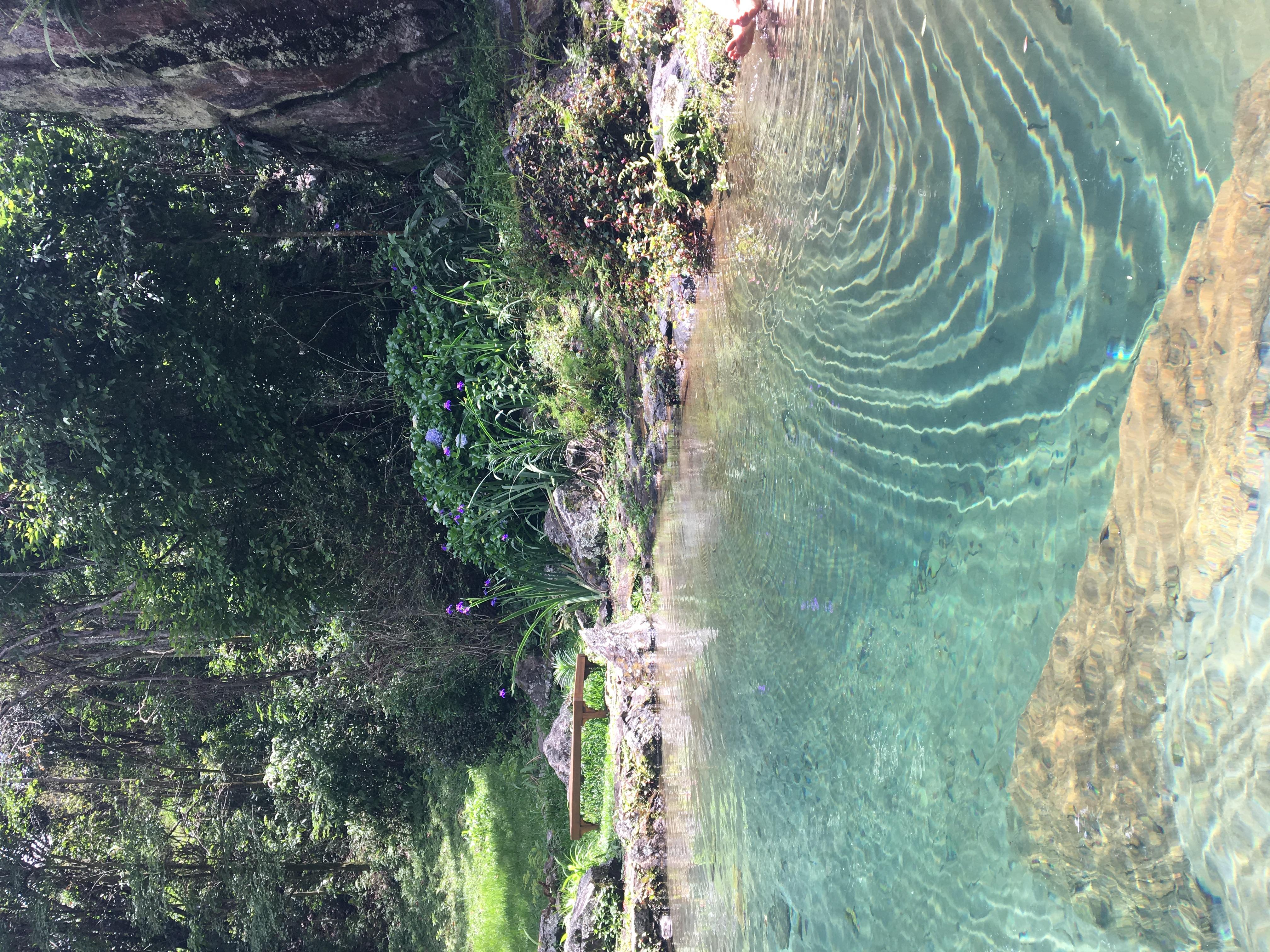 sim 13 agua e ondas piscina natural