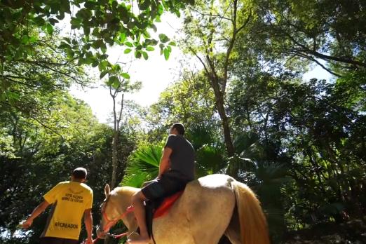 passeio a cavalo_p2.png